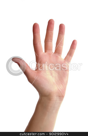 Five Fingers stock photo, An adult female hand holding up five fingers spread apart.  Image includes clipping path. by Tyler Olson