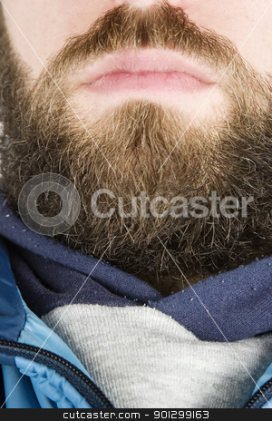 Beard Close Up stock photo, A young male with a full beard, detail image. by Tyler Olson