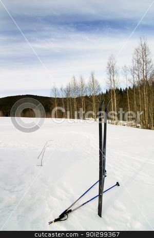 Skis in Snow stock photo, Taking a break on a ski trip. by Tyler Olson