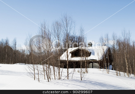 Winter Forest Cabin stock photo, A cabin in the forest on a winter landscape. by Tyler Olson