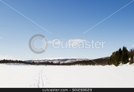 Frozen Lake Landscape stock photo, A frozen lake covered in snow. by Tyler Olson