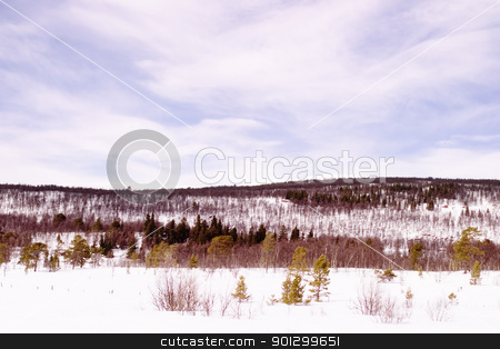 Frozen Lake stock photo, A snowly landscape over a frozen lake by Tyler Olson