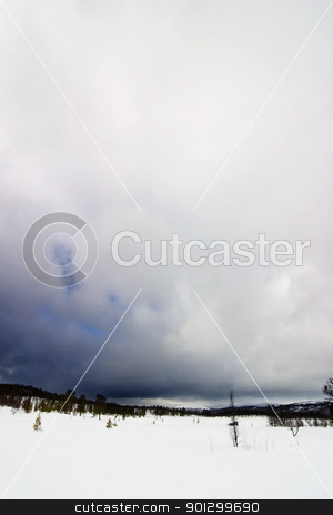 Winter Landscape stock photo, A wintery cold landscape in Norway by Tyler Olson