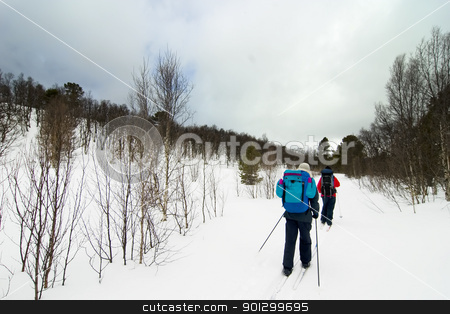 Skiing in Winter stock photo, Skiing no a winter landscape by Tyler Olson