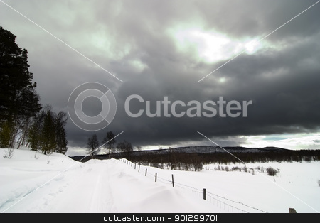 Winter Landscape stock photo, A winter landsacpe with lots of snow. by Tyler Olson