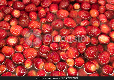 Strawberries in Water Background stock photo, A strawberry background image by Tyler Olson