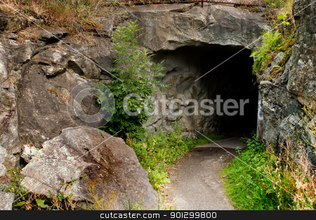 Cave stock photo, A path leading into a dark stone cave by Tyler Olson