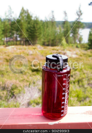 Water bottle stock photo, A red water bottle outdoors in nature by Tyler Olson
