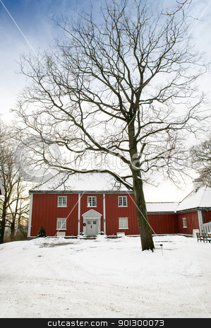 Large Wood House stock photo, A large red wooden house in a nice neighborhood surrounded by bushes. by Tyler Olson