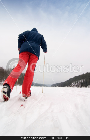 Cross Country Skier stock photo, A cross country skier out on a refreshing trip over a frozen lake. by Tyler Olson
