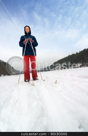 Cross Country Skier stock photo, A cross country skiier out on a refreshing trip over a frozen lake. by Tyler Olson