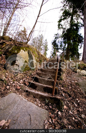 Forest Path stock photo, An old concrete stair case leading into the forest. by Tyler Olson