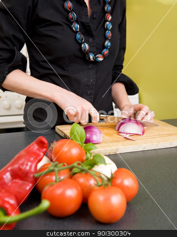 Woman Cutting an Onion stock photo, A detail image of a woman cutting a red onion at home in the kitchen. - Focus is placed on the knife and onion. by Tyler Olson