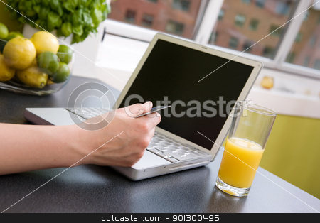 Internet Shopping stock photo, A young female making an online purchase from her kitchen. by Tyler Olson