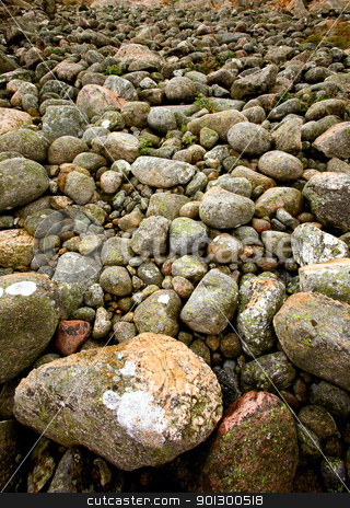 Rock Texture stock photo, A rock background texture by Tyler Olson