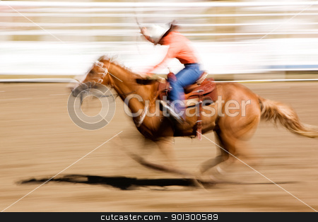 Running Horse stock photo, A horse galloping fast with a female rider -  motion blur. by Tyler Olson