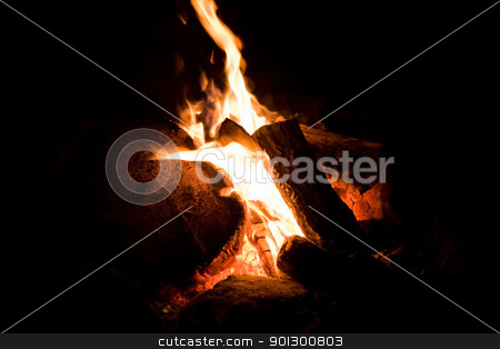 Camp Fire Detail stock photo, A close up of a camp fire by Tyler Olson