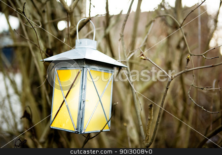 Forest Lantern stock photo, A lantern haning on a tree branch by Tyler Olson