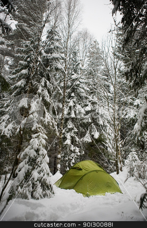 Winter Camping stock photo, A tent in the forest during winter by Tyler Olson