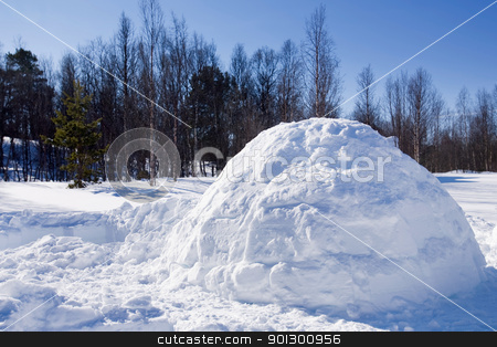 Igloo in Winter stock photo, An igloo in a winter landscape by Tyler Olson