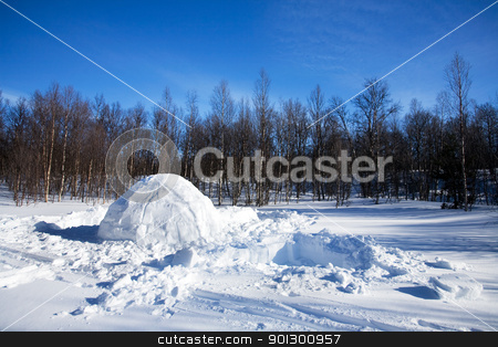 Igloo winter landscape stock photo, An igloo in a winter landscape by Tyler Olson