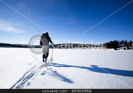 Back Country Skiing stock photo, A cross country skiier skiing off trail back country;  by Tyler Olson