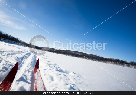 Cross Country Skies stock photo, A cross country skiier skiing off trail back country by Tyler Olson