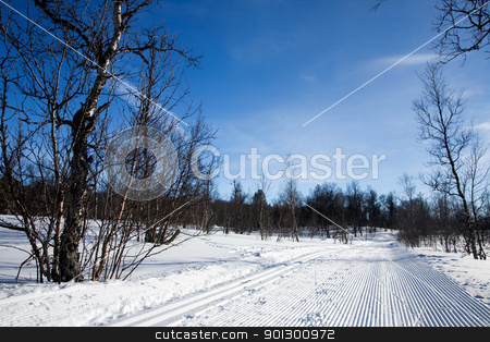 Groomed Cross Country Ski Trail stock photo, A freshly groomed cross country ski trail by Tyler Olson