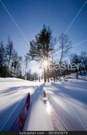 Cross Country Skiing Motion stock photo, Motion action shot of cross country skiing. by Tyler Olson