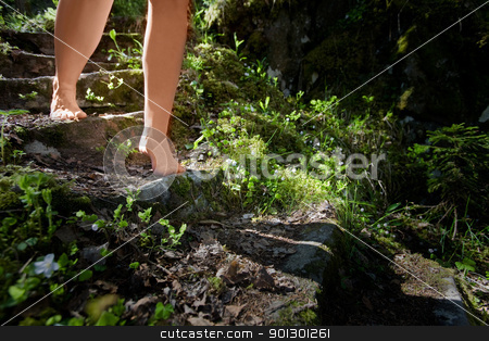 Secret Garden stock photo, Female legs walking down a garden stair way by Tyler Olson