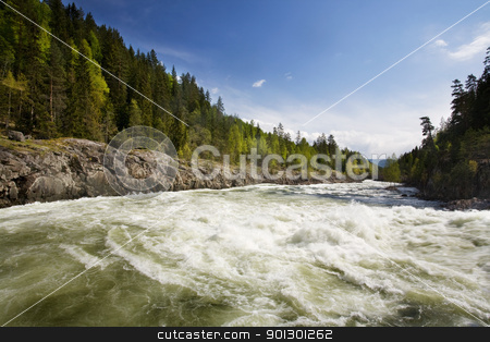 Forest River stock photo, A fast moving river with white water rapids. by Tyler Olson