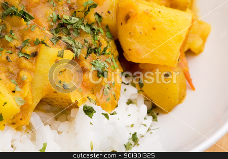 Indian Food Detail stock photo, Indian food macro - potato curry with lentils by Tyler Olson