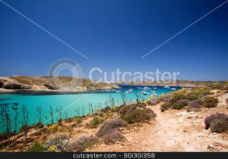 Gozo Blue Lagoon stock photo, Comino island and the blue lagoon by Tyler Olson