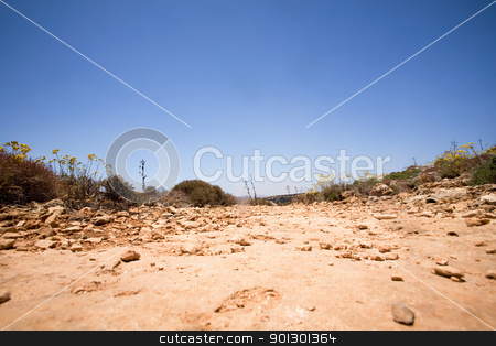 Dirt Path stock photo, An old dirt road with a deep blue sky by Tyler Olson