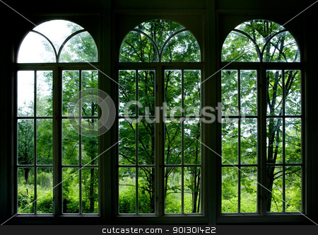 Garden Window stock photo, Large arched windows looking out into a garden or forest by Tyler Olson