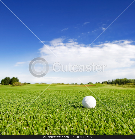 Golf stock photo, A golf ball on a fairway on a golf couse by Tyler Olson