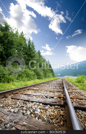 Railraod Tracks stock photo, Railroad tracks in nature by Tyler Olson