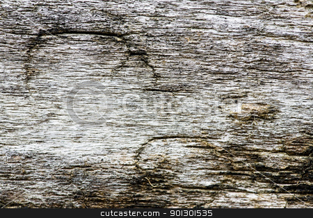 Old Wood Texture stock photo, Old weathered drift wood texture by Tyler Olson