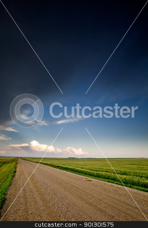 Prairie Landscape stock photo, A road on a prairie landscape by Tyler Olson