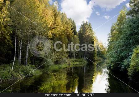 Fall Colors stock photo, A quiet stream surrounded by beautiful fall colors by Tyler Olson