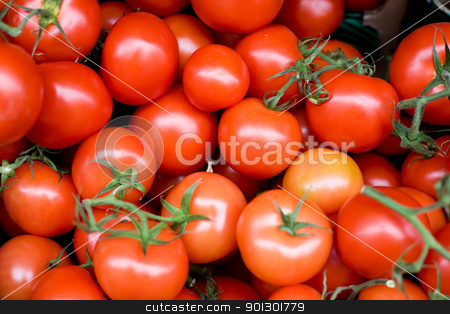 Fresh Tomatoes stock photo, Fresh produce for sale - tomatoes by Tyler Olson