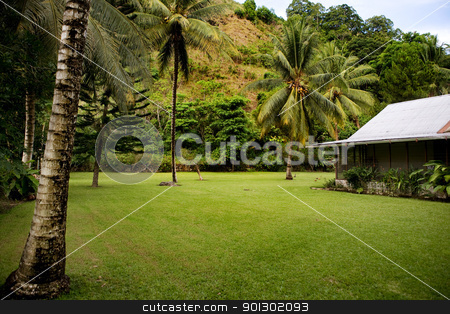 Tropical Back Yard stock photo, A tropical back yard with a house by Tyler Olson