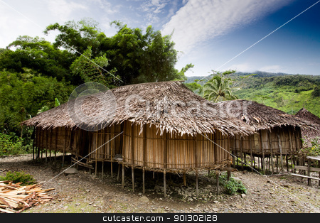 Village Hut stock photo, A traditional village hut in Papua, Indonesia by Tyler Olson