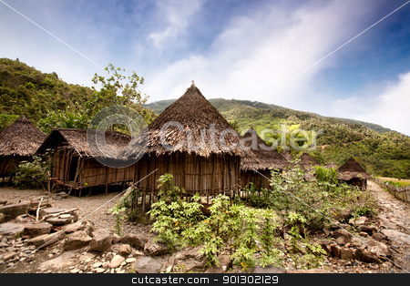 Traditional Village stock photo, A traditional village in Papua, Indonesia by Tyler Olson