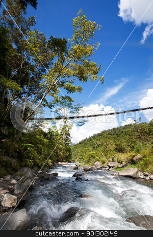 Mountain Stream stock photo, A tropical mountain stream with hanging bridge by Tyler Olson