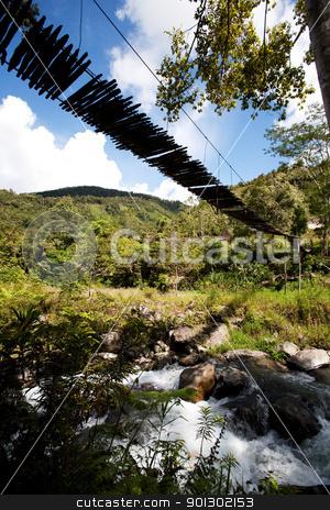 Mountain River with Hanging Bridge stock photo, A tropical mountain stream with hanging bridge by Tyler Olson