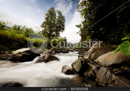 Rapid River stock photo, A rapid flowing river with motion blur on the water by Tyler Olson