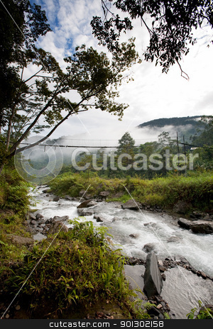 River with Hanging Bridge stock photo, A hanging bridge over rapids by Tyler Olson