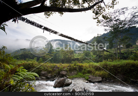 Hanging Bridge Suspension stock photo, A hanging bridge over rapids by Tyler Olson