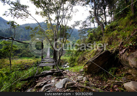 Hanging Bridge Suspension stock photo, A scary hanging bridge in a tropical landscape by Tyler Olson